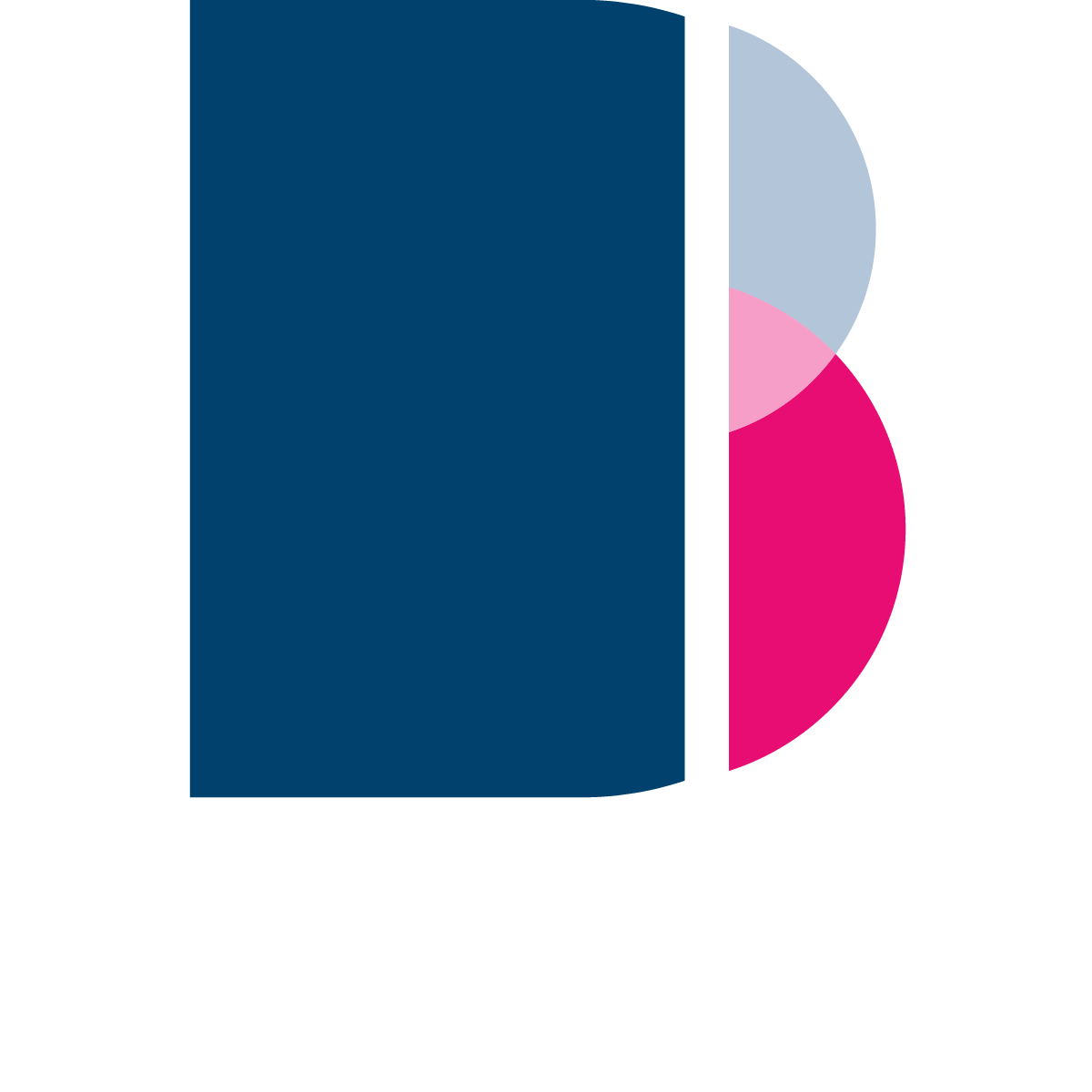 Bonus Allocation Software